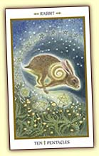 Purchase the Animals Divine Tarot