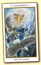Animals Divine Tarot Gallery